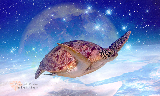 Sea turtle swimming with stars, moon and a global landscape in the background.