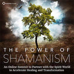 The Power of Shamanism online summit cover photo, with a tree, hawk and sun shining through the clouds.