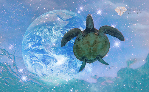 Sea turtle swimming in water with stars and the earth in the background