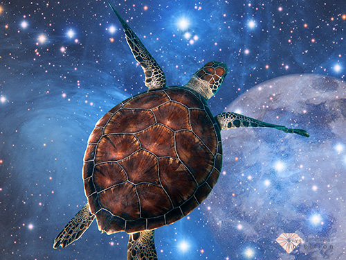 Turtle floating above stars and the moon.