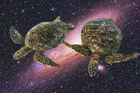 Two turtles floating in space with galaxy in the background.