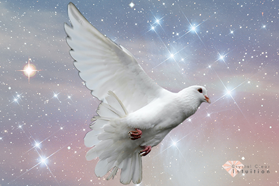 white dove flying with clouds and stars in the background.