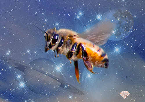 honeybee flying in star filled sky with saturn and the moon in the background
